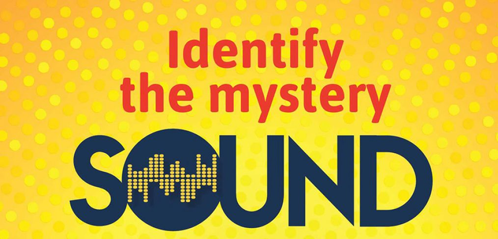 identify-mystery-sound