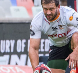 OFM backs Cheetahs for Currie Cup 2021 Champions